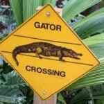 Orlando Wetland Parks